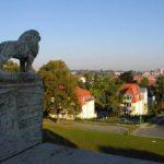 Blick vom Stadtberg auf die Stadt Foto Stadtverwaltung