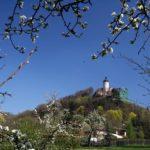 Burg Ranis Marco_Barnebeck_pixelio.de