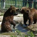 Erholungpark Possen Zoo
